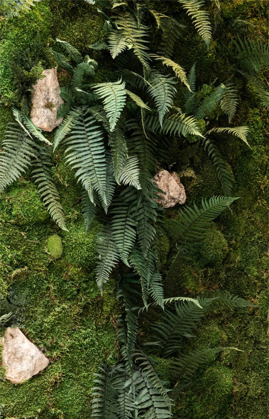 jardin vertical flora medium